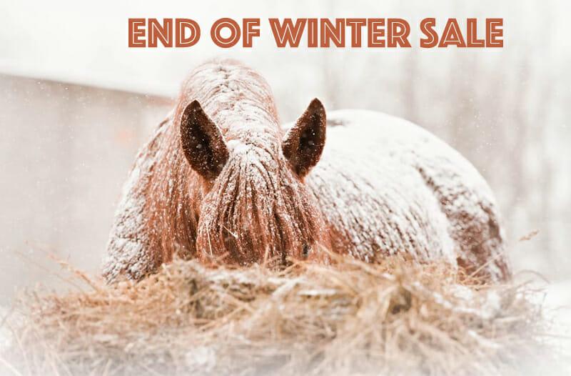 Winter Sale 10% off